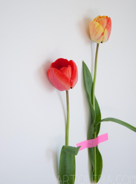 decorare parete con i fiori