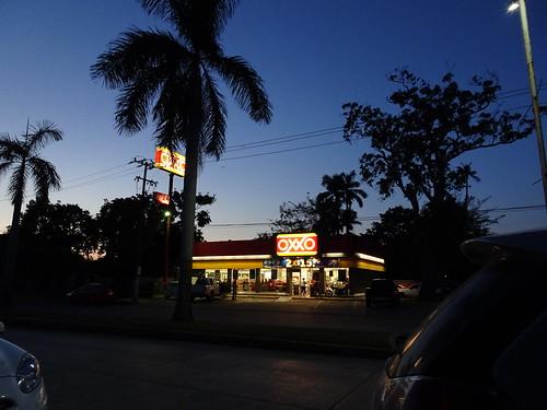 travel sunset tree silhouette shop night mexico store palm travelogue tuxpan