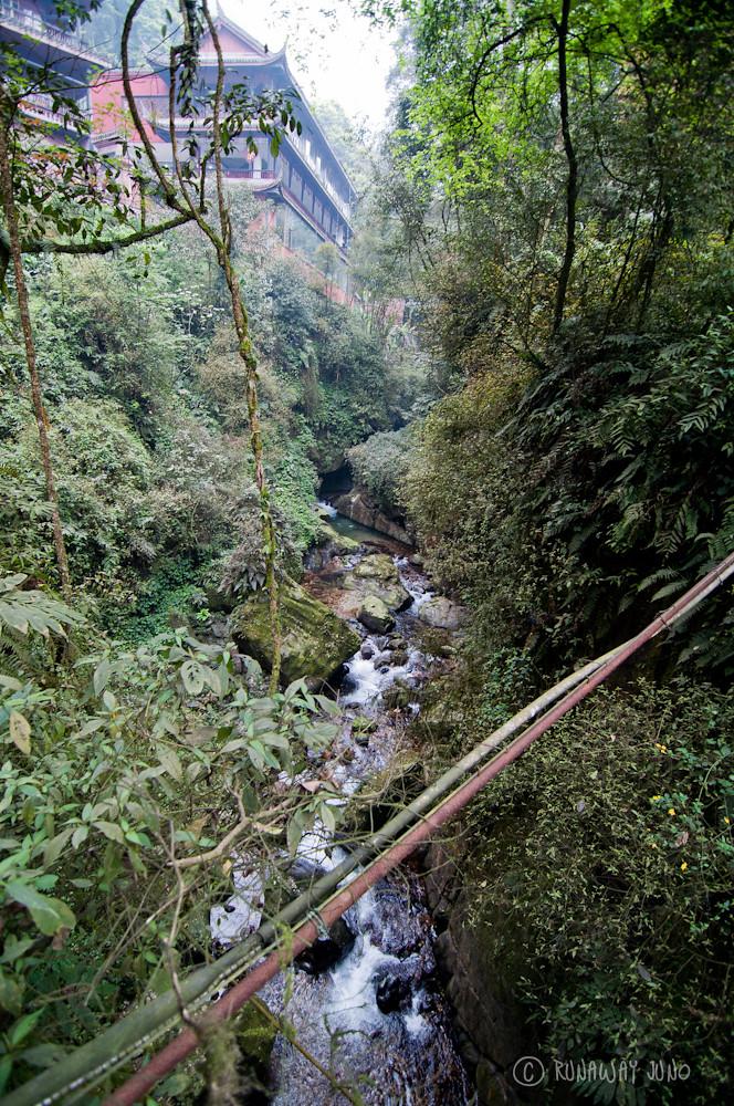 Stream at Qingyin Temple