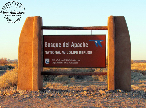 Bosque del Apache Sign