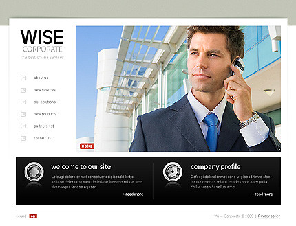 Xml flash site 25613 Wise corporate
