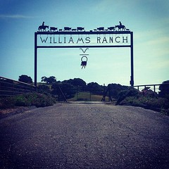 Williams Ranch #ranch #Buellton #instagram #iphone