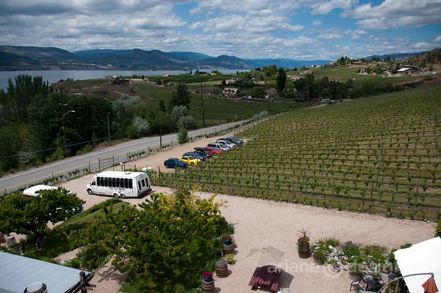 Hillside Winery and Bistro/view from the tower
