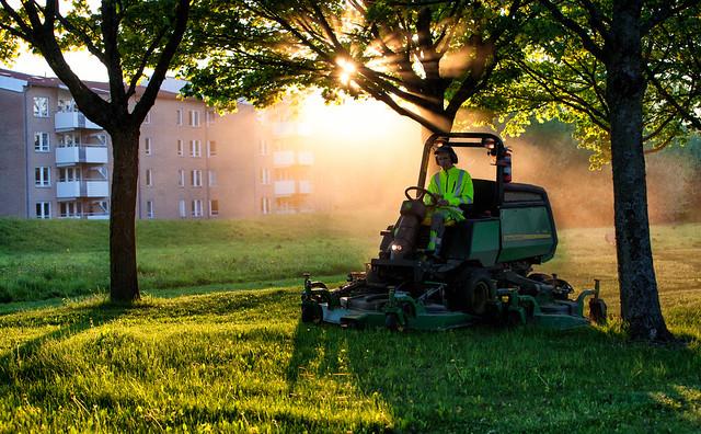 Lawn mowing, Salabackar, Uppsala