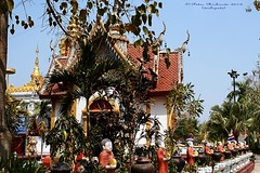 IMG_0623 Temples at San Pa Tong, วัดทึ่สันป่าตอง