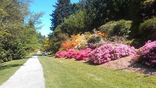 Arboretum by christopher575