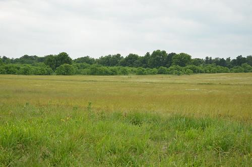 field rural landscape scenic mo missouri ozarks historicsite ashgrove statehistoricsite nathanboone