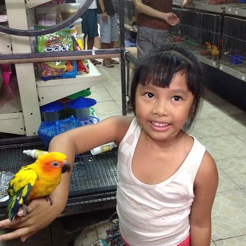 Bela likes this parrot. Pero need pa pagipunan