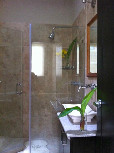 10. Guest Bath with Skylight