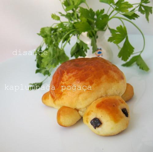 kaplumbağa poğaça1