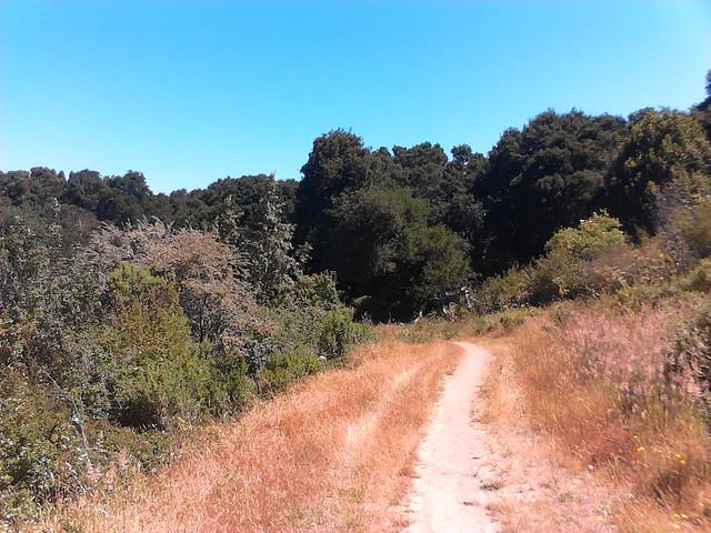 Soaring Hawk trail.