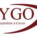 LogoActualizado Cygo