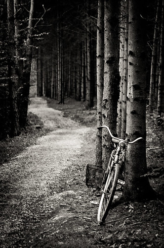 blackandwhite monochrome bike forest way hungary path pathways hársas máriaújfalu