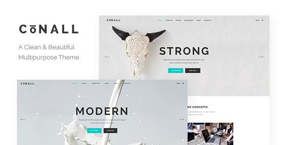 Conall v1.2.1 – A Clean & Beautiful Multipurpose Theme