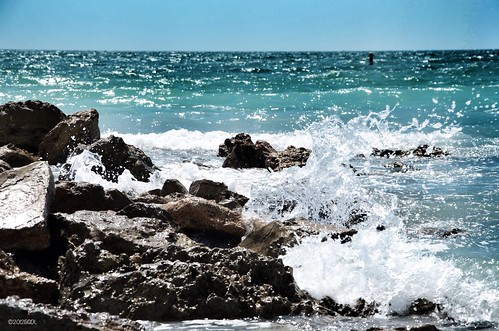 beach sarasota starmandscircle lidobeach nikond7000 ourdailychallenge