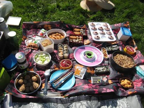 Hanami 2012 picnic in Amsterdamse Bos