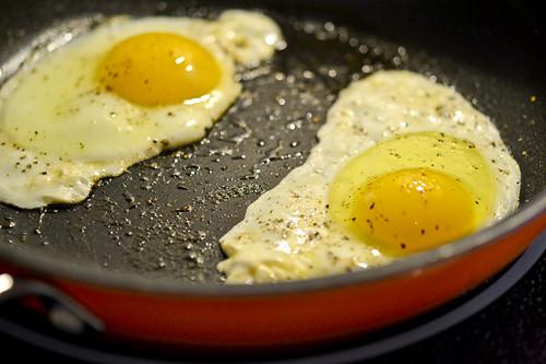 Fancy Egg Sanwiches 13