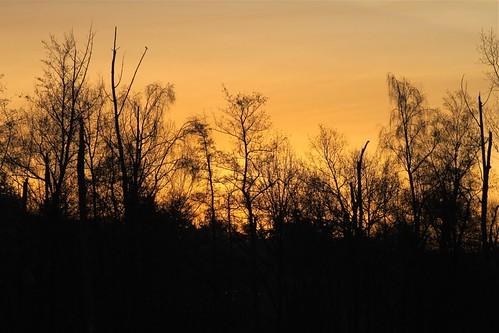 nature netherlands spring nederland sunsetsunrise gestel hole7 gcddphotoproject golfclubdedommel