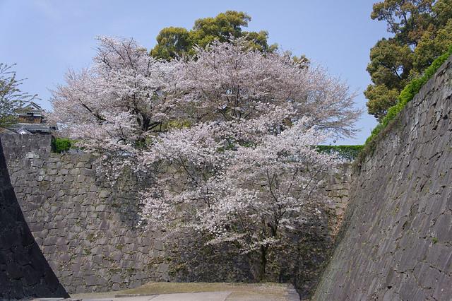 2012-kyushu-465