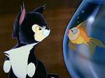 Figaro & Cleo - Inspiration