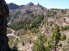 Gran Canaria - Surroundings of Roque Nublo - The Monk in the Spring