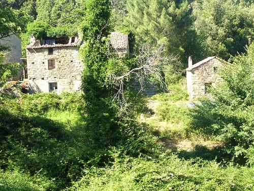 Dans la descente directe Bocca di Cateri - L'Agnu : arrivée à l'Agnu