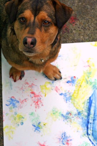 "144. ""Arts and Crafts"" - Our dogs all have some form of inner artist - paw prints, ""carved"" sticks, home ""redecorations"", etc. Show us your dog's handiwork today! - last day Mar 29"