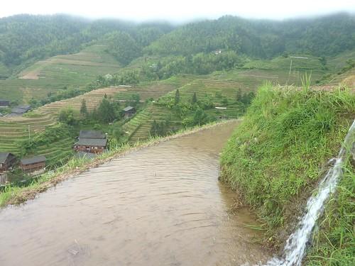 C-Guangxi-Pingan-Terrasse des 9 dragons (15)