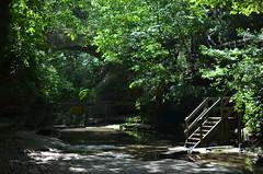 Matthiessen State Park 119