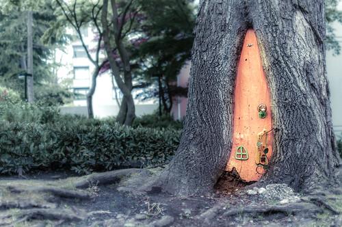 Nelson Street Gnome Door