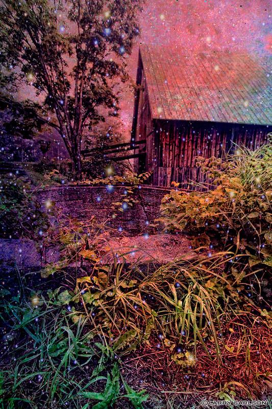 Larry Carlson, GALAXY GARDEN, Digital Photography,  2011.