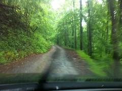 Bear Creek Camp Road