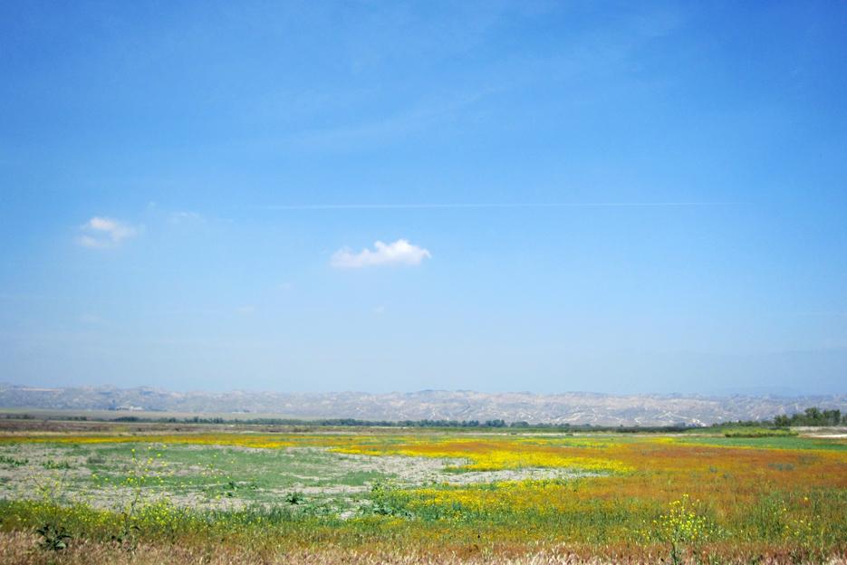 050412_sanjoc_04_landscape2