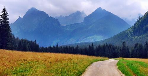 valley slovakia dolina tatry tatra alti bielovodska panoramafotográfico blinkagain visokè