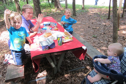 birthday picnic lunch