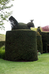 Wightwick Manor Topiary
