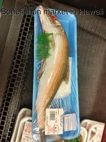 Market Bonefish