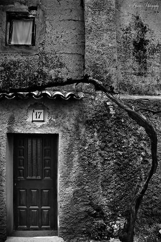 Arbol caido, Calle San Gil con Vallejo