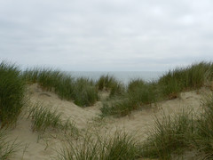 Castlemorris beach, Co. Wexford