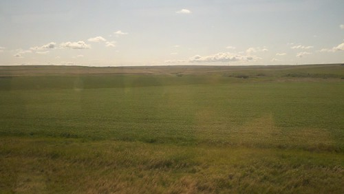 from the train #9 (east of Williston)