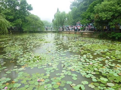 C-Hunan-Shaoshan (66)