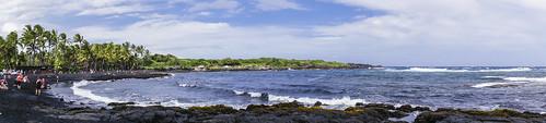 beach blacksand hawaii palmtrees hi bigisland greenturtles