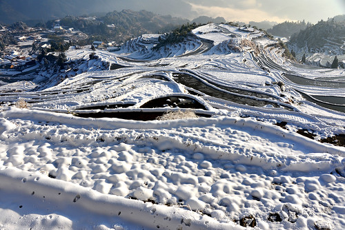 china morning winter white snow plant cold reflection tree heritage water weather rural sunrise golden countryside village snowy farm country mel layers melinda agriculture zhejiang 浙江 梯田 chanmelmel melindachan 雲和梯田 雲和