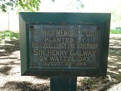 War memorial oak plaque