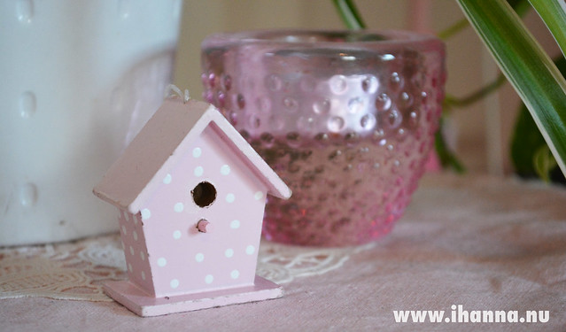And a tiny pink cottage