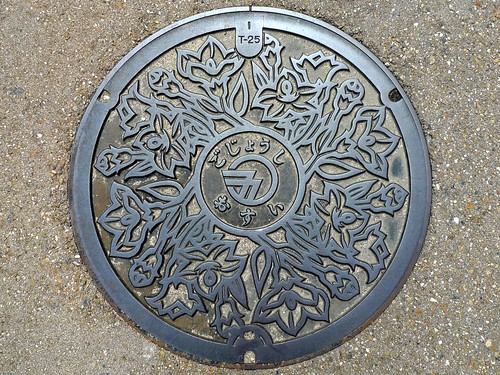 Gojo Nara, manhole cover 3 (奈良県五條市のマンホール3)