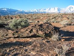 #mypubliclandsroadtrip 2016: Places That Rock, Volcanic Tablelands