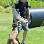 April 21, 2016 - 07:10 - Deputy B. Deblieck of the St. Lucie County Sheriff's Office mans the bite sleeve during training of the K9 unit.