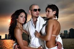 AARC Member - Pitbull