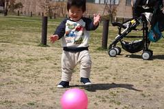 とらちゃん@中目黒公園(2012/3/20)